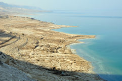 Dead sea. Royalty Free Stock Image