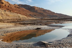 Dead Sea湖 库存照片