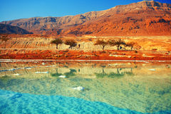 Free Dead Sea Stock Image - 53021401