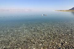 Dead sea beach. Stock Images