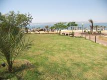 Dead Sea beach. Salt structures on the Dead Sea beach Royalty Free Stock Photos