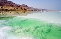 Dead sea. Beach of the Dead Sea. Israel Stock Photo