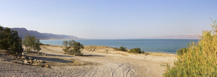 Dead sea beach panorama Royalty Free Stock Photo