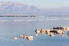 Dead Sea beach salt lump. Royalty Free Stock Photos