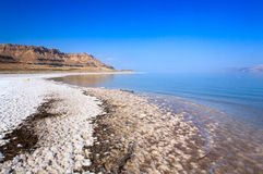 Dead Sea coast Royalty Free Stock Photography