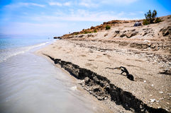 Dead Sea coast, Israel. View on the beach of the Dead Sea Royalty Free Stock Photo