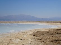 Dead sea coast with salt crystals Royalty Free Stock Image