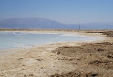 Dead sea coast with salt crystals Royalty Free Stock Photography