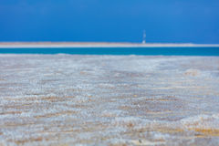 Dead Sea coastline Royalty Free Stock Photo