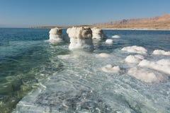 Dead sea coastline Stock Images
