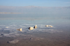 Dead sea, Israel Stock Photography