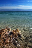 Dead sea - israel - crystal clear salty water. Portrait photo of the dead sea, Israel Royalty Free Stock Photography