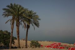 Dead Sea, Israel. Public beach at Dead Sea stock photography