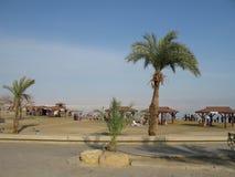 Dead Sea, Israel Royalty Free Stock Photography