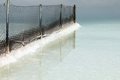 Dead sea. Metal mesh fence Royalty Free Stock Photos