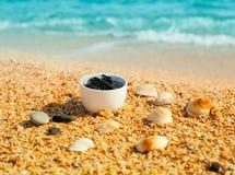Dead Sea mud in a bowl Stock Photos