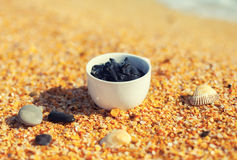 Dead Sea mud in a cup Stock Images