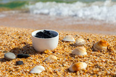 Dead sea mud for spa treatments in a cup Stock Image