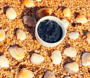 Dead sea mud for spa treatments in a cup Royalty Free Stock Images