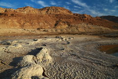 Dead Sea nature Stock Image