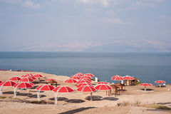 Dead Sea Park royalty free stock photo