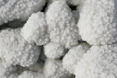 Dead sea. Salt. stock image