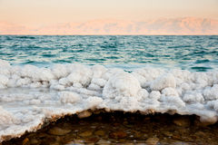 Dead Sea Salt Formations Royalty Free Stock Photo