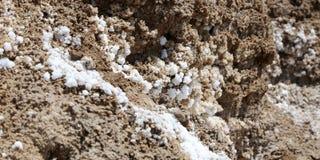 Dead sea salt at Jordan.  royalty free stock image