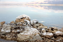 Dead Sea Salt at Jordan rocks Stock Images