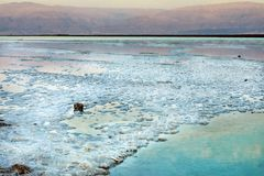 Dead Sea, is a salt lake bordering Jordan to the north, and Israel to the west. Its surface and shores are 430.5 metres 1,412 ft below sea level. Sea salt stock photography