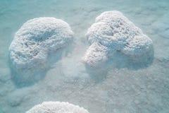 Dead sea salt Royalty Free Stock Photos