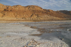 Dead Sea Salts. The Dead Sea contains the highest proportion of salts in the world, when the water dry it turns into different shapes, this kind of salt is rich royalty free stock photo