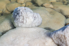 Dead Sea salty rocks Stock Photos