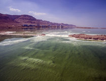 Dead sea salty shore coastline Stock Image