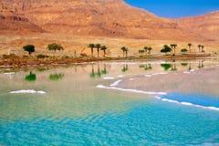 Dead Sea seashore Royalty Free Stock Photo