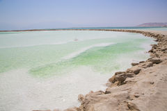 Dead sea shore Royalty Free Stock Image