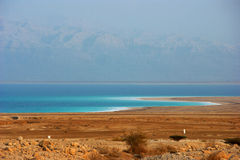Dead Sea Shoreline Royalty Free Stock Photo