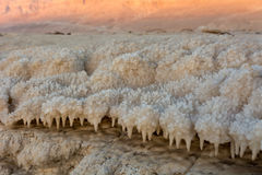 Dead sea texture Royalty Free Stock Image