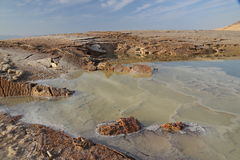 Dead Sea. A variety of forms and lines of the Dead Sea royalty free stock photos