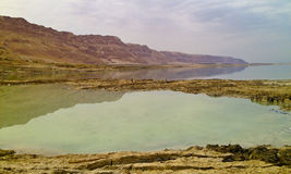 Dead Sea view royalty free stock photo
