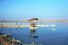 The dead sea Stock Images
