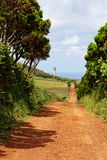 Hiking path to the lighthouse on the Azores island Sao Jorge stock images