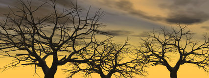 Dead_Sunset_Tree2 Royalty Free Stock Photography