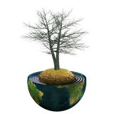 Dead tree in the center of planet earth Stock Photo