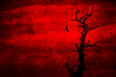 Dead tree with crows perched and flying Royalty Free Stock Image