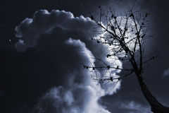 Dead tree in a full moon night Royalty Free Stock Photo