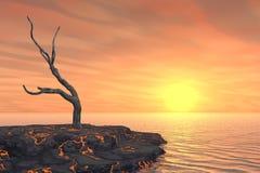 Dead Tree on Hot Lava Island Royalty Free Stock Photo