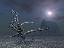 Dead Tree and House at Night Royalty Free Stock Photo