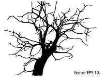 Dead Tree without Leaves Vector Illustration Sketched Royalty Free Stock Images