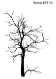 Dead Tree without Leaves Vector Illustration Sketched Stock Images